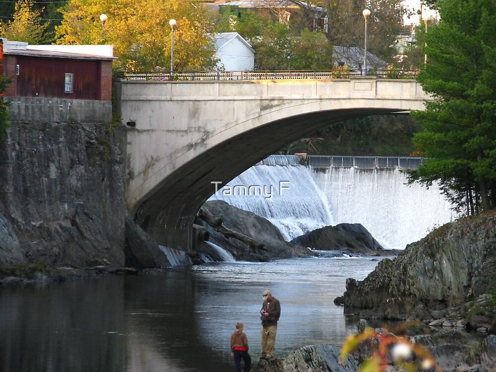 Fishing Near the Falls by Tammy F