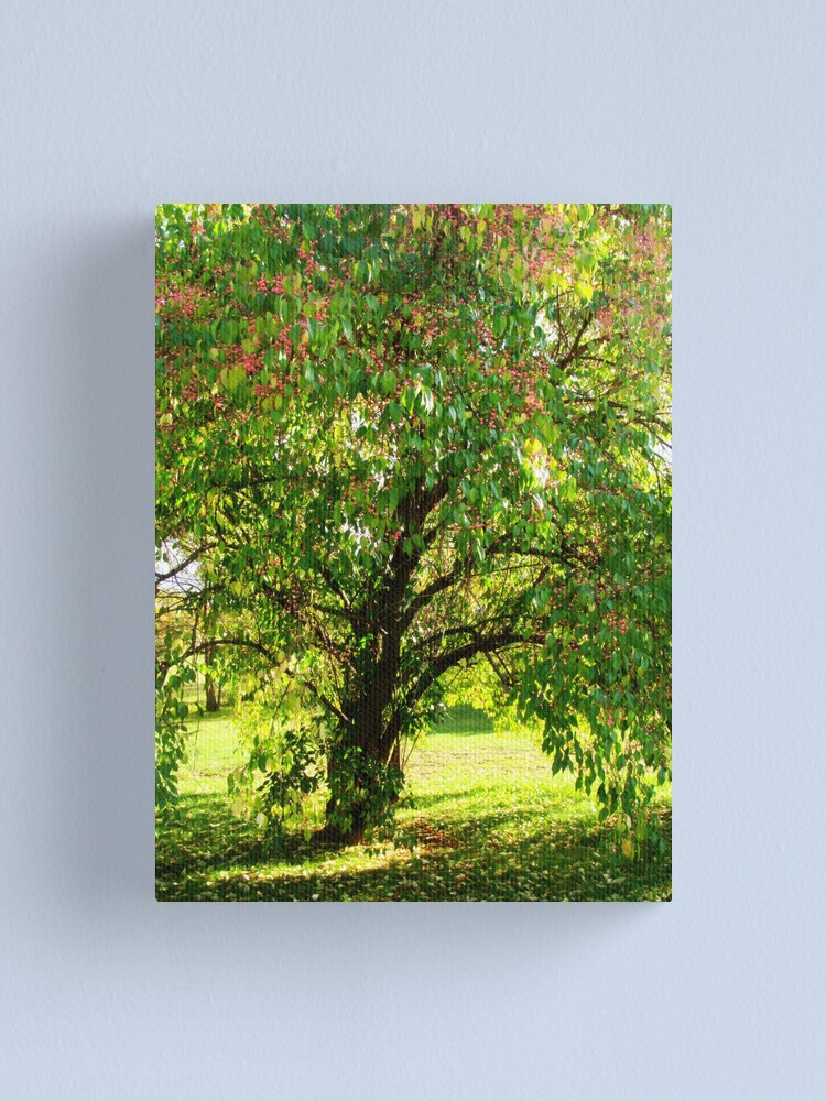 Alternate view of Tree of Life Canvas Print