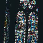Oldest 1235 glass from Beauvais, Cathedral Reims France 19840823 0033  by Fred Mitchell