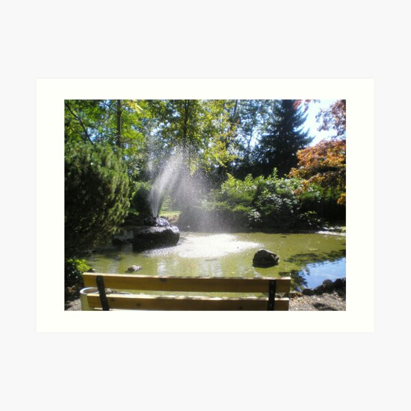 Serenity of an afternoon Art Print