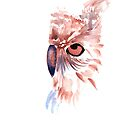 owl by RavensLanding