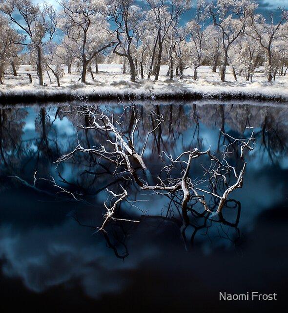 Awakening by Naomi Frost