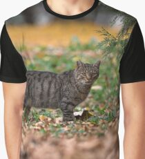Hello Kitty  Graphic T-Shirt