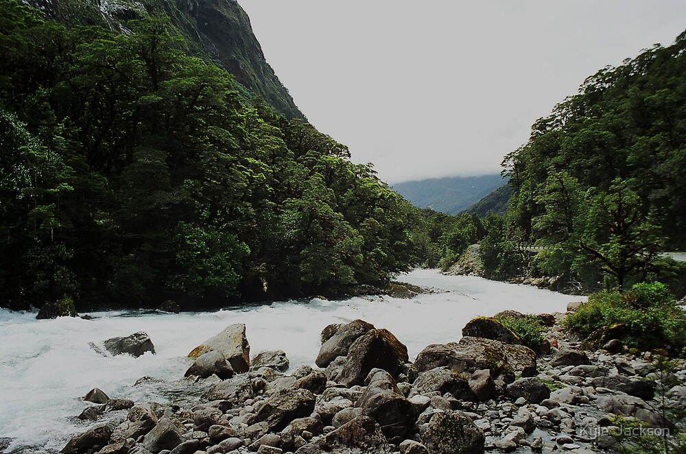 Hollyford River ,Fiordland by Kyle  Jackson