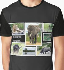The famous *BIG FIVE* Graphic T-Shirt