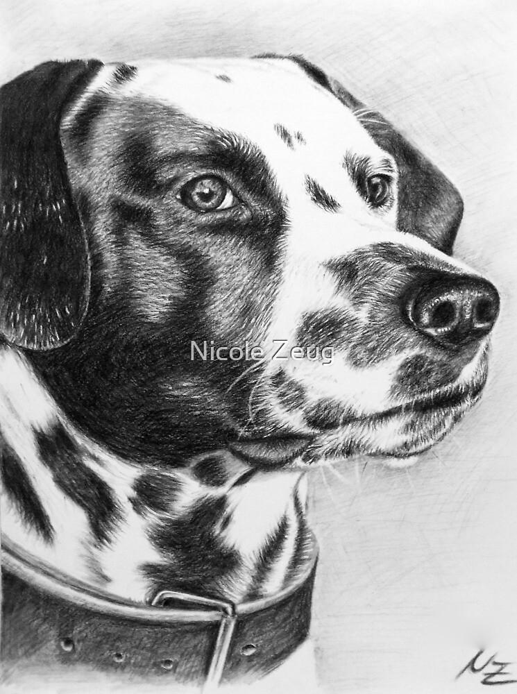 Dalmatian Max by Nicole Zeug
