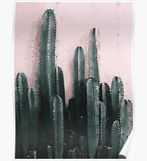 Saguaro Cactus on Rose Background | Plants Poster