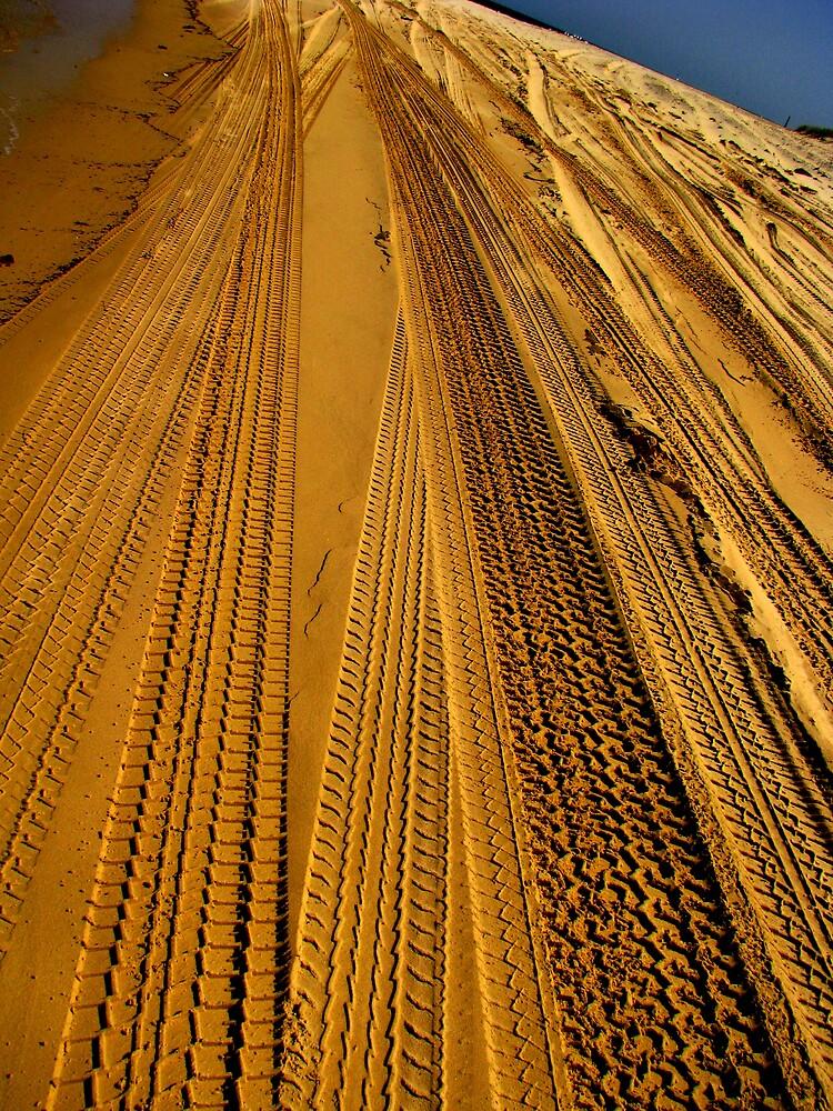 Tracks by Glenn Browning