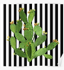 Prickly Pear on Stripes | Plants Poster