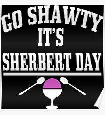 Sherbert Day Funny Geek Nerd Poster