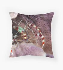 Banded Cleaners Throw Pillow