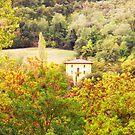 Emilia-Romagna - Italy by Yannik Hay