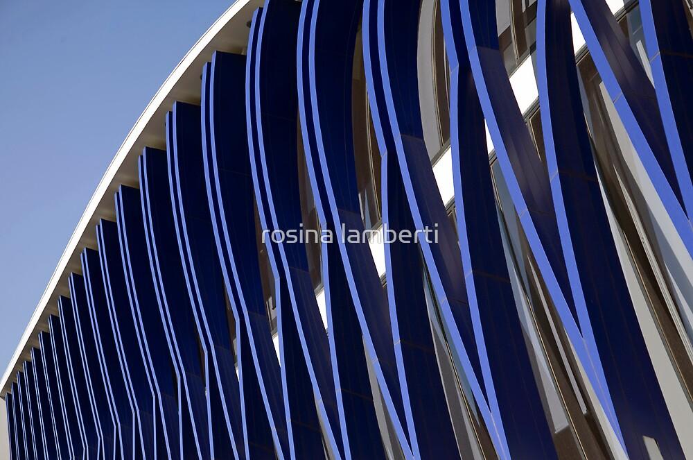 blue & white by Rosina  Lamberti
