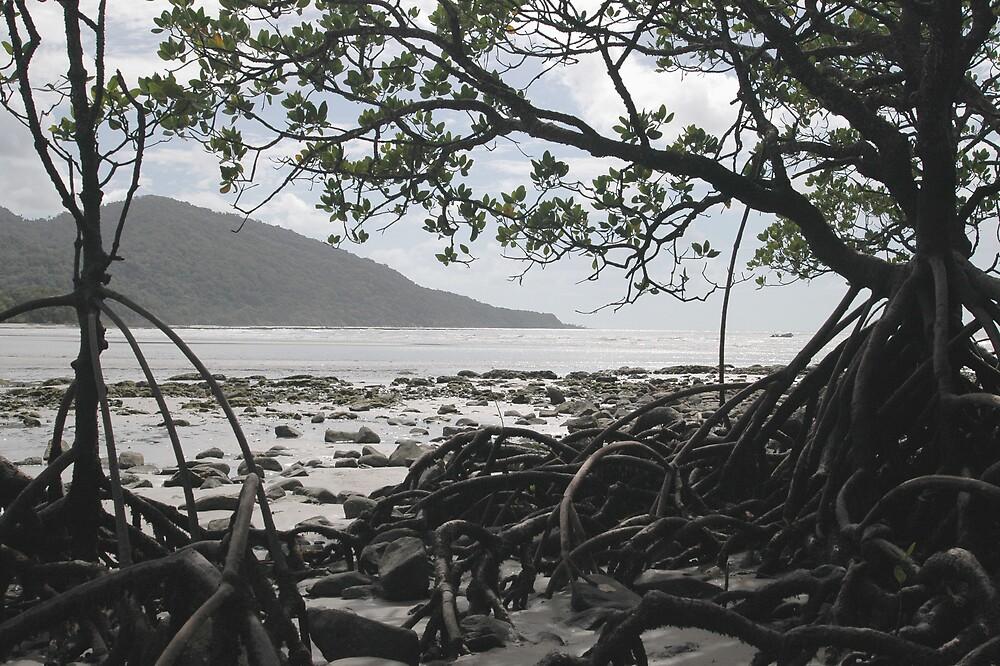 Mangroves by ONYAMARK