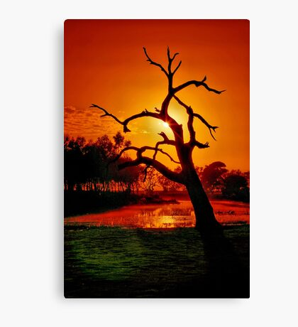 """Anticipation Rewarded"" Canvas Print"