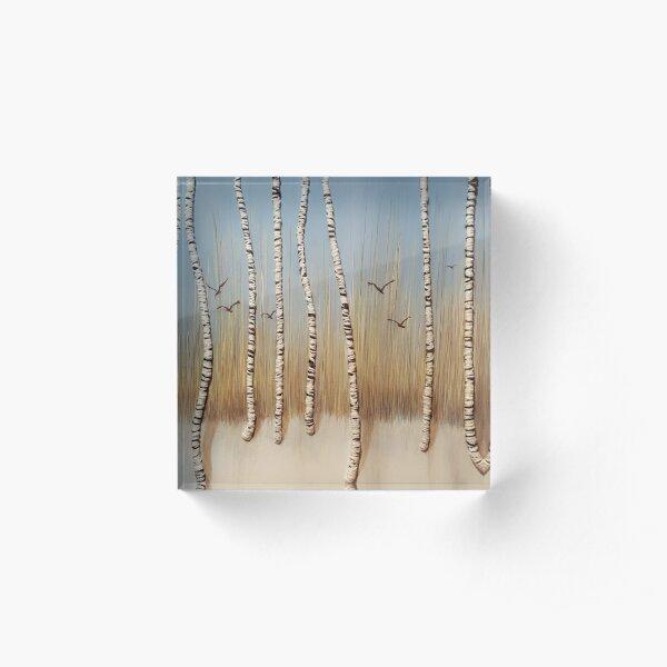 Birch Trees In Winter Acrylic Block