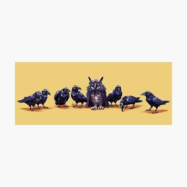 Raven Beauty Pageant Photographic Print