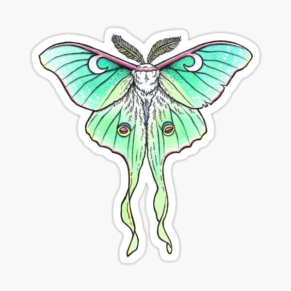 Moth of the Blue Moon | Luna Moth Art Sticker