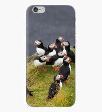 Puffins iPhone Case