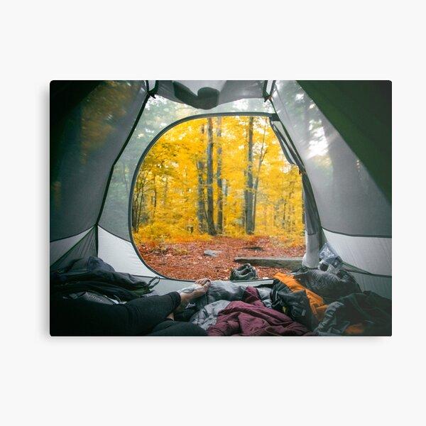 Fall on the Trail Metal Print