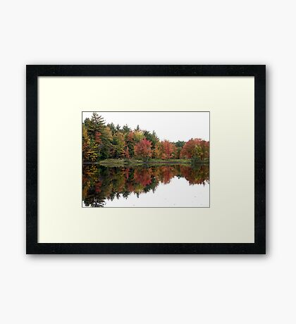 New Hampshire Foliage 2008 #1 Framed Print