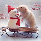 Christmas by Ellen van Deelen