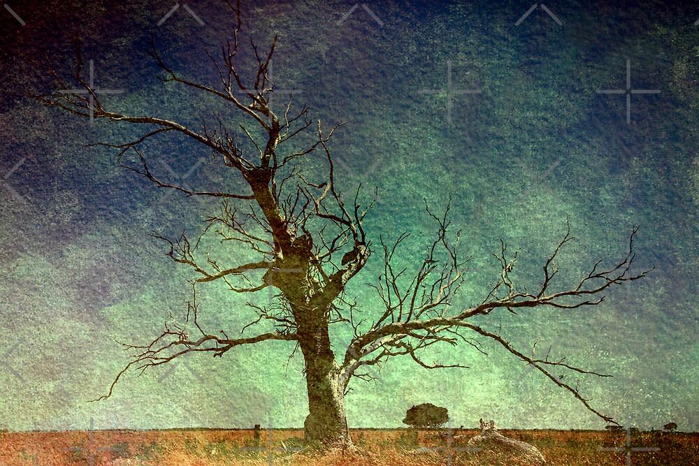 Ravaged Land by Varinia   - Globalphotos