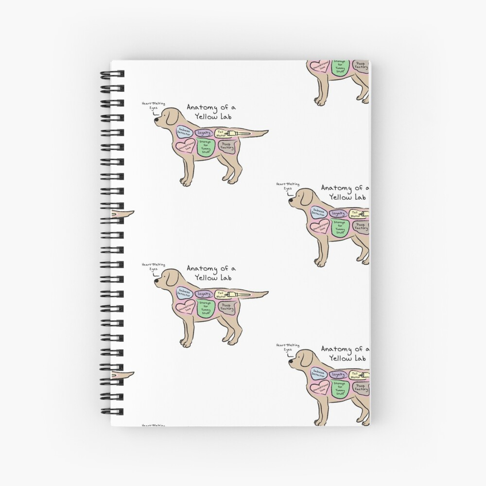 Anatomy of a Yellow Lab Spiral Notebook