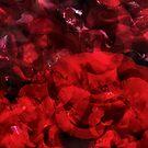 Rosa Plenteous 2 by Pekka Nikrus