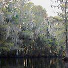 Shingle Creek by paintin4him