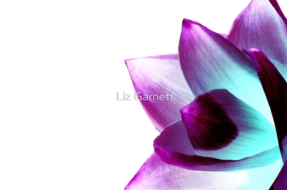 Flower - UK617/14 - www.lizgarnett.com by Liz Garnett