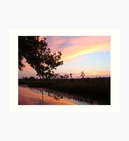 BANNERS OF LEMON LIGHT - SUNSET ON ECONFINA CREEK Art Print