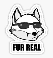 Fur Real - Funny Sly Fox Joke Tshirt Sticker