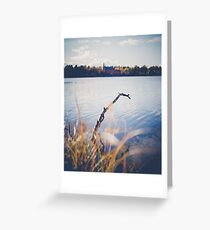 Tree in water Greeting Card