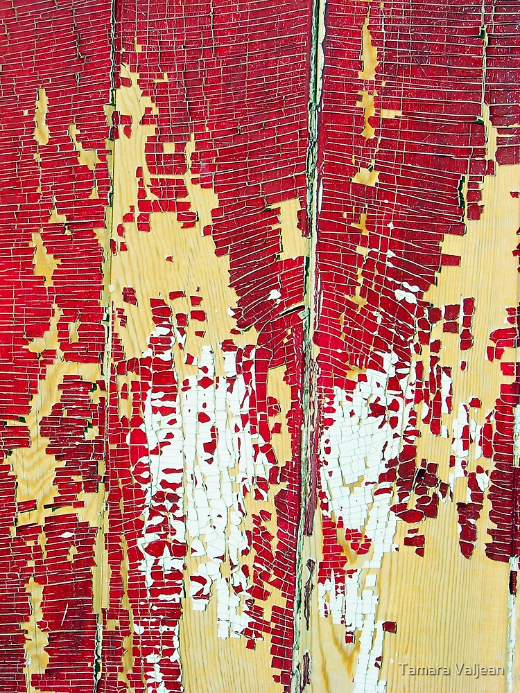 Peeling Paint by Tamara Valjean