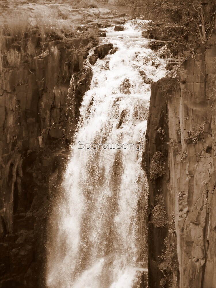 Thundering Falls by Sparowsong