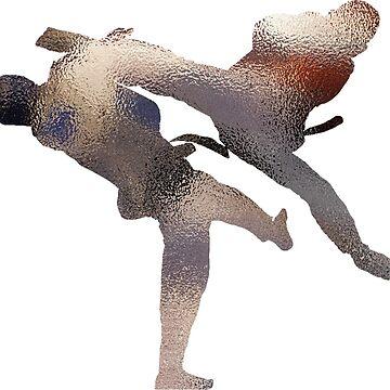 taekwondo - fighter by thnatha