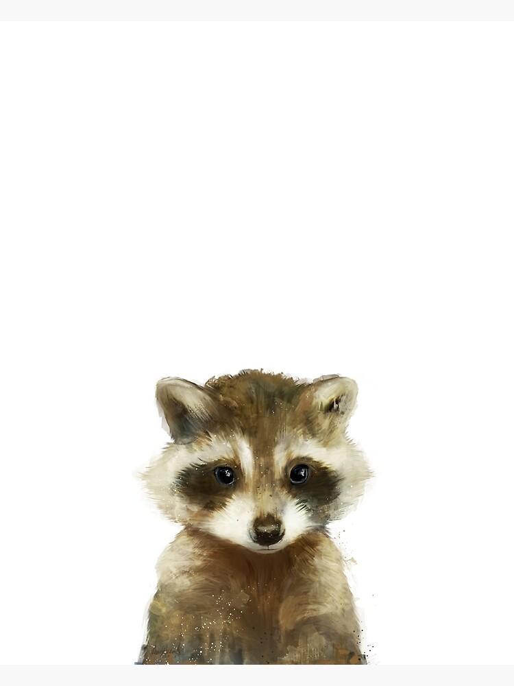 Little Raccoon by AmyHamilton