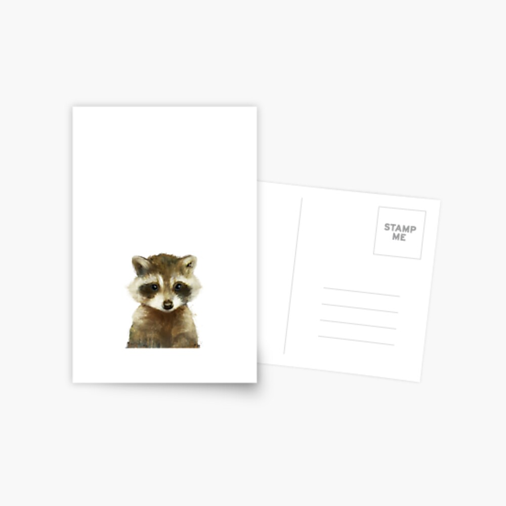 Little Raccoon Postcard