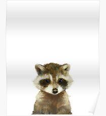 Little Raccoon Poster