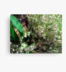 Lilies of the valley 3 Canvas Print