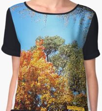 Colours of Autumn Women's Chiffon Top