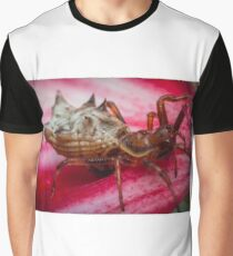 Spined Micrathena Spider Graphic T-Shirt
