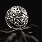 Black Pearl by Bob Wall
