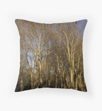 Fitzroy gardens Throw Pillow