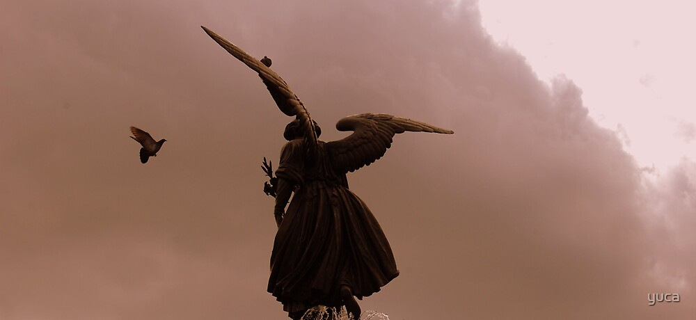 Angel  by yuca