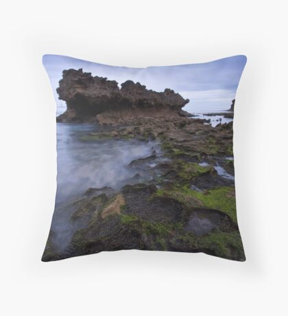 Where Have We Landed ? Throw Pillow