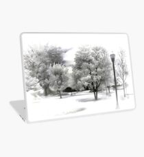 Winter in the Park Laptop Skin