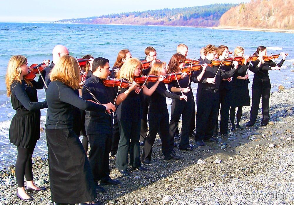 Violins on the Beach by Tamara Valjean