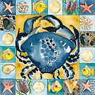 Blue Crab by wildalive